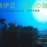 「西伊豆・井田の海」写真展開催中!